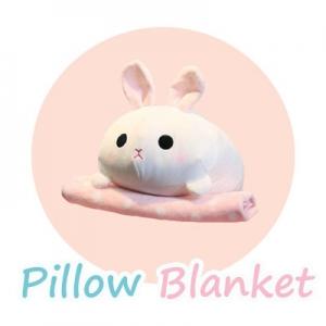 PillowBlanket